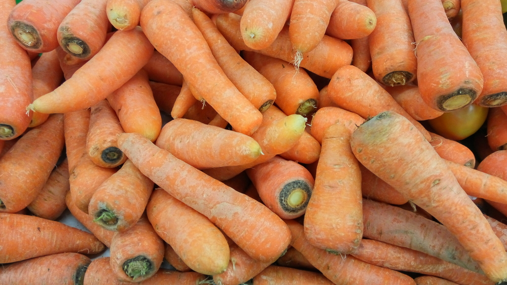 Lots of Carrots